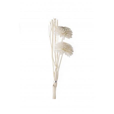 Kvapų Difuzorių Lazdelės, 7 vnt. pakuotėje, rožinės 33 cm