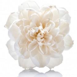 Difuzoriaus gėlė Peony, Ø 15 cm