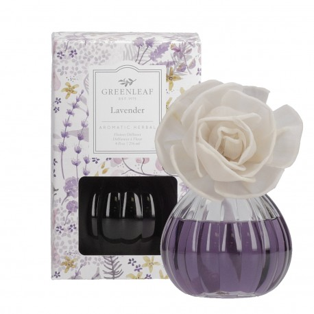Namų kvapas Lavender, rinkinys su gėle 236 ml.